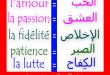 بالصور تحميل قاموس فرنسي عربي مجانا pdf 9e83742f56293c95ae7e94b3cab11b40 110x75
