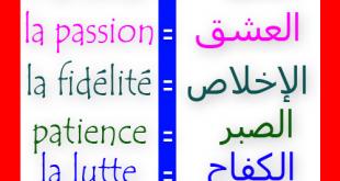 بالصور تحميل قاموس فرنسي عربي مجانا pdf 9e83742f56293c95ae7e94b3cab11b40 310x165