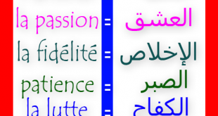 صوره تحميل قاموس فرنسي عربي مجانا pdf
