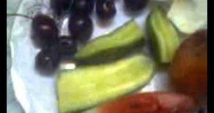 بالصور طعام البلبل العراقي a4b523cfcb4407e7a2cf1a71270a66aa 310x165