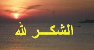 بالصور صور شكر الله على فضله acb37ce7d04ebd543782e56456031ce8 2 310x165