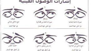 صوره تعلم لغة العيون بالصور