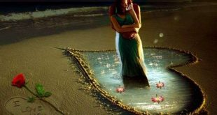 عالم الرومانسية والحب
