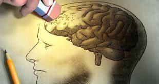 صوره علاج الذاكرة الضعيفة