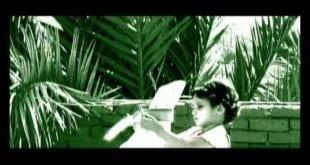 صورة كلمات اغنية الراية البيضاء