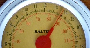 علاج لزيادة الوزن