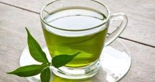 صورة كم يحرق الشاي الاخضر من السعرات