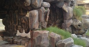 صور حديقة الحيوان بالدمام