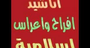 اناشيد اعراس اسلامية mp3