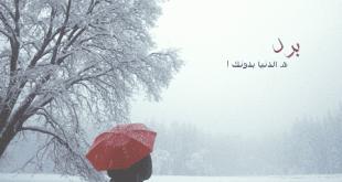 صوره اجمل الكلمات عن الشتاء