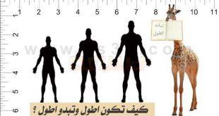بالصور اريد ان اطول 10 سم d450bb34fb3e56917a3e3c7ba9b1d3ae 310x165