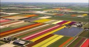 صوره افضل المزارع في العالم