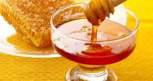 اضرار العسل للحامل