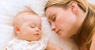 صورة الرحم ذو القرنين والحمل