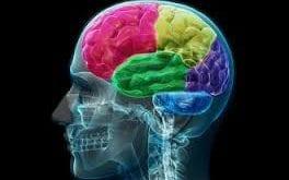 صورة اختبار عمر الدماغ