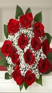 صورة صور زهور وورود , اجمل الورد الزهور الحمراء