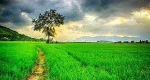 صور صور طبيعيه جميله جدا , جايبلك صور للطبيعه من الاخر هتعجبك اوى