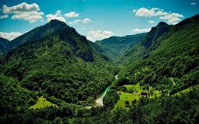 تفسير حلم الجبل الاخضر , يا ترى الجبل الاخضر فى الحلم معناة اى هقولك