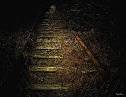 تفسير الظلام في المنام , حلمتى انك ماشيه فى ضلمه وعايزة تعرفى تفسيرة هعرفك