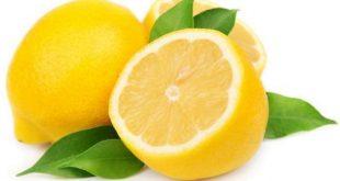 بالصور تفسير الاحلام الليمون wpid lemon3 310x165