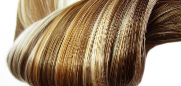 صورة ترطيب الشعر الجاف , العنايه والحفاظ على الشعر