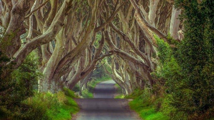 صورة تفسير حلم الطريق الضيق , رؤية الطريق الضيق فى المنام وتفسيرها