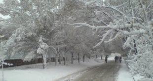 صور شتاء قارس , اغرب الصور عن الشتاء القارس