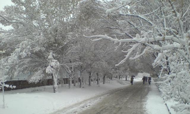 بالصور شتاء قارس , اغرب الصور عن الشتاء القارس 74878