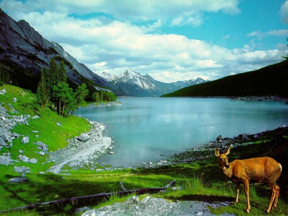 بالصور صور جميلة وخلابة , من الطبيعة اجمل الصور الخلابة الرائعه 74787 3